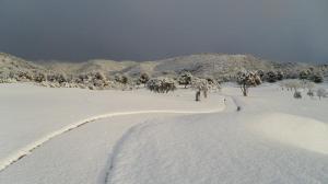 nieve en Arabella Golf Mallorca10