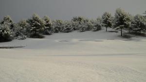 nieve en Arabella Golf Mallorca2