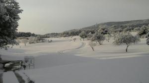 nieve en Arabella Golf Mallorca6