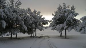 nieve en Arabella Golf Mallorca8