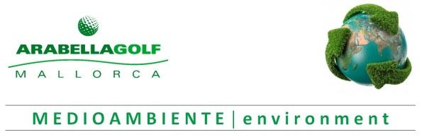 cabecera medio ambiente