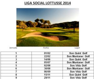 Liga Social 2014